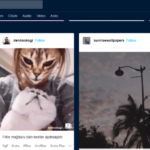 Cómo buscar en Tumblr [4 métodos diferentes]