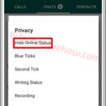 Crear una última vista falsa en WhatsApp [Funcionando]