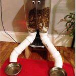 ¿Cómo hacer un sistema de alimentación automática para sus mascotas?