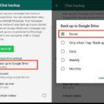 Cómo usar Whatsapp - Guía detallada para empezar