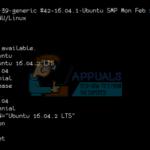 Cómo usar el comando de la versión Linux