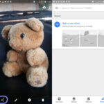 Cómo utilizar Google Photos para almacenar todas tus fotos